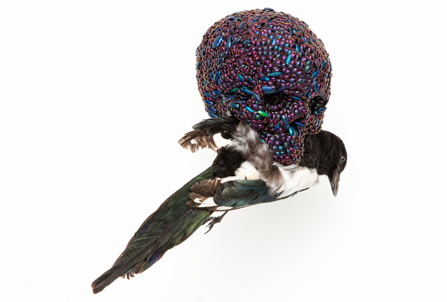 Jan Fabre, 'Skull With Magpie,' 2001, Mario Mauroner Contemporary Art Salzburg-Vienna