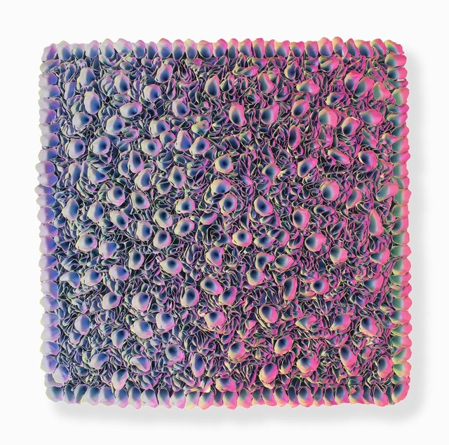 , 'Flowerbed Colorchange,' 2018, SmithDavidson Gallery