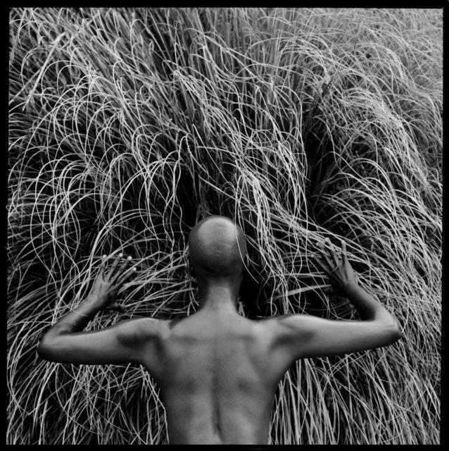 Javiera Estrada, 'Magic Awaits', 2014, L'Atelier Ldep Concierge & Gallery