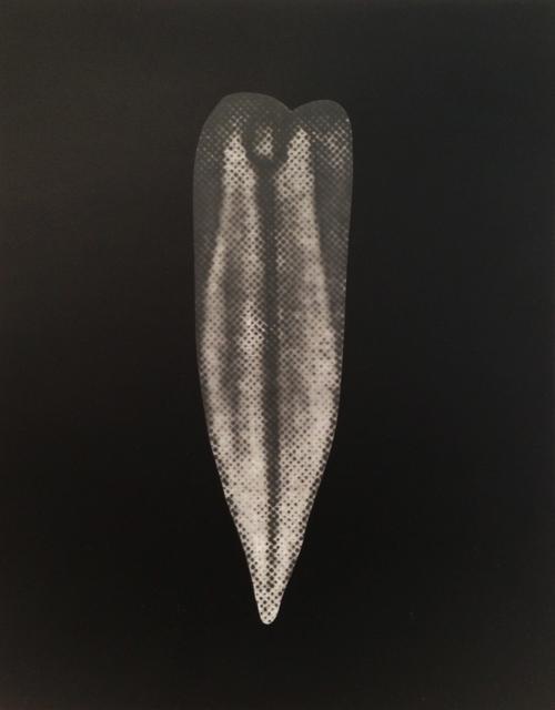 , 'Vinca II,' 2013, Galerie Greta Meert
