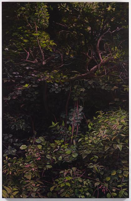 , 'Hedge 6,' 2019, UNION Gallery