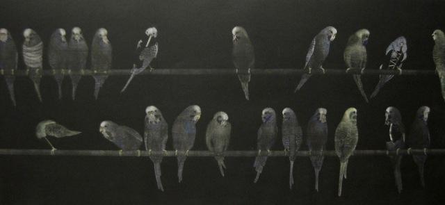 , 'budgerigars ,' 1991-1992, The Art Vault