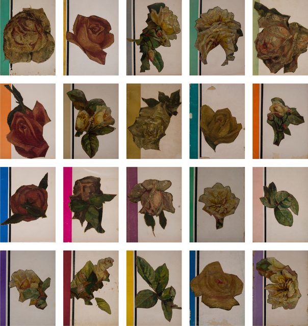 , 'Flores Amateur,' 2015, Arróniz Arte Contemporáneo