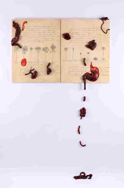 , 'Florence: A Paisagem Dentro de Mim,' 1997, Paulo Kuczynski Escritório de Arte