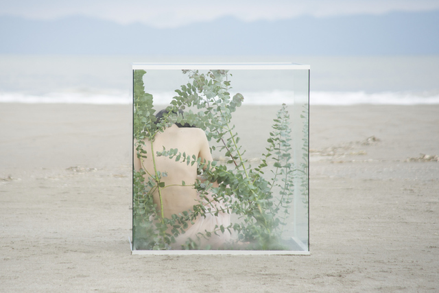 , 'Woman in glass cube ,' , Getty Images Gallery