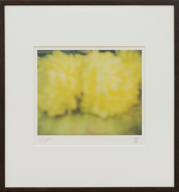 Cy Twombly, 'Peonies, Bassano in Teverina', 2005, Gagosian