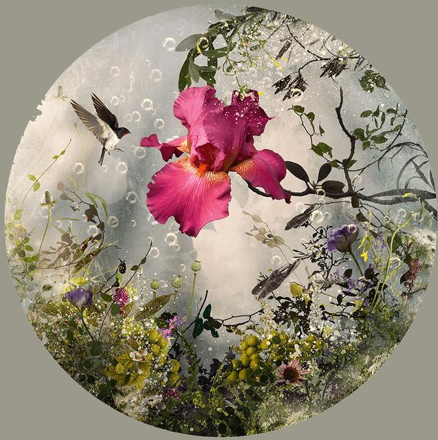 , 'Arcadia,' 2013, Davis Gallery & Framing