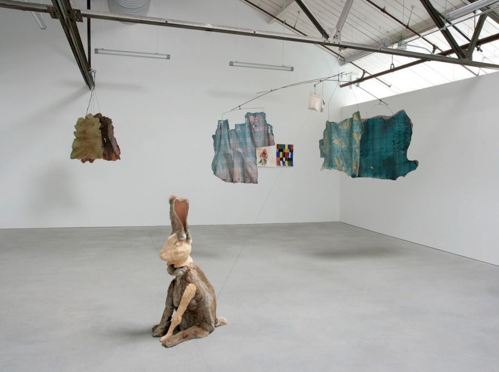 Anne Chu Installation Shot,  Anglim Gilbert Gallery at Minnesota Street Project