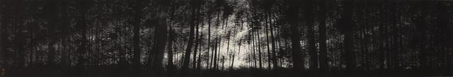XiaoHai Zhao 赵小海, 'Faltering Light', ca. 2018, White Space Art Asia