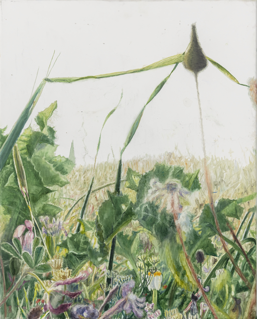 Vibeke Slyngstad, 'Shuafat IX', 2019, Painting, Oil on Canvas, Kristin Hjellegjerde Gallery