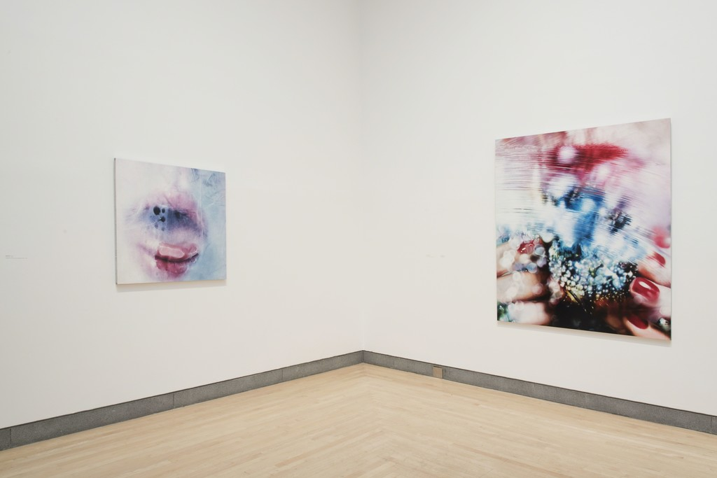 "Installation view of ""Marilyn Minter: Pretty/Dirty"" at Brooklyn Museum, Brooklyn (2016). Photo credit:  Jonathan Dorado/Brooklyn Museum"