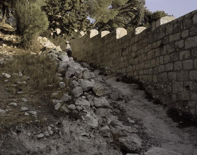 , 'Untitled (Les Paysages),' 2009, Jeu de Paume