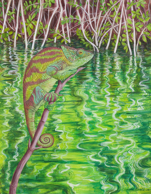 , 'Chameleon,' 2012, The Galleries at Salmagundi
