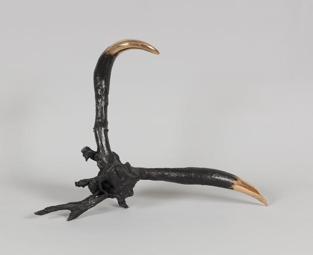 , 'Underground Hornship,' 2018, Carolina Nitsch Contemporary Art