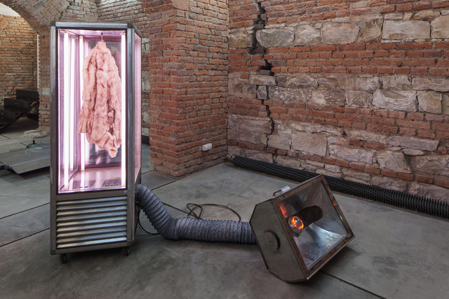 , 'Canicular is the cold,' 2014-2016, FUTURA Centre for Contemporary Art