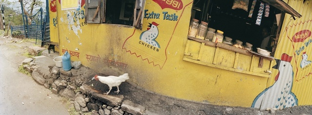 , 'India, Darjeeling, Chicken Taste.,' 2002, Anastasia Photo