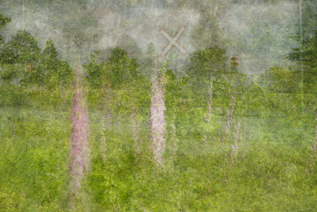, 'Digitalis,' 2013, Winsor Gallery