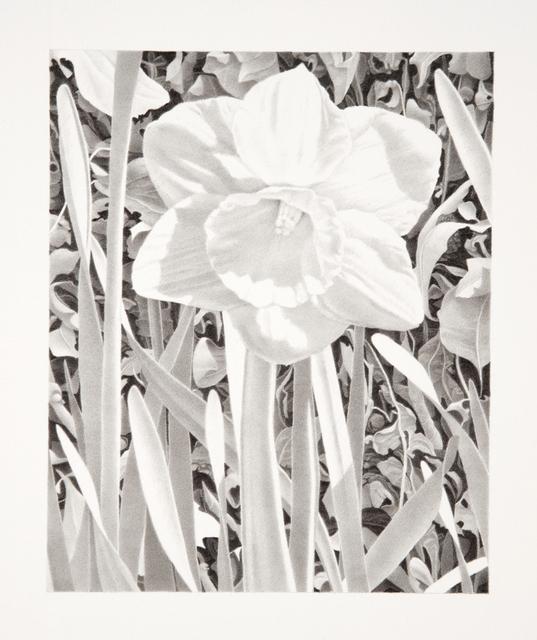 Bill Richards, 'Secret Garden, Central Park #3', 2004, Nancy Hoffman Gallery