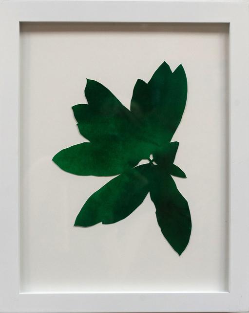 Hannah Cole, 'Dark Green Weed', 2018, Tracey Morgan Gallery