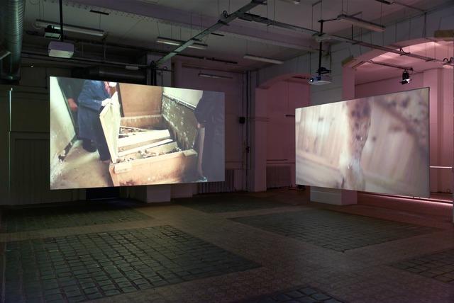Petrit Halilaj, 'July 14th? (Installation view)', 2013, Fondation d'Entreprise Galeries Lafayette
