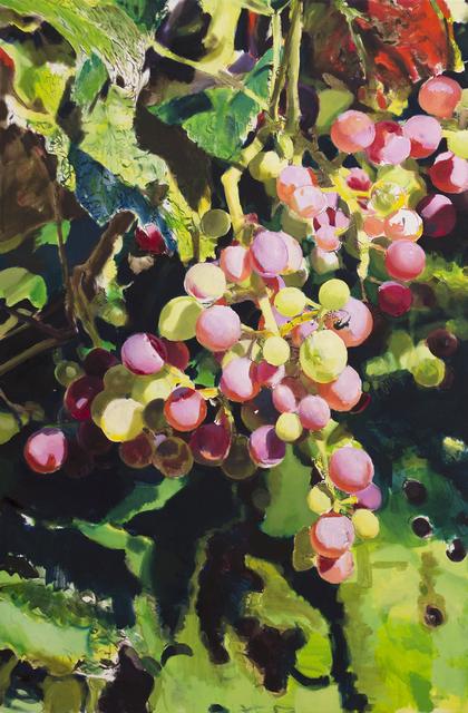 , 'Grapes,' 2017, Aki Gallery
