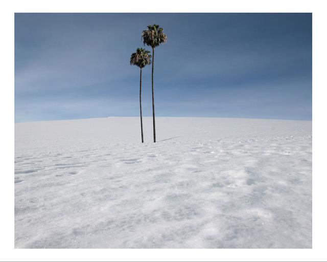 Max Steven Grossman, 'Antartica No. 1, ed. 1/5', 2010, Beatriz Esguerra Art