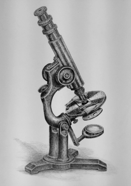 Kathleen Powers, 'Antique Microscope', 2017, The Secret Gallery