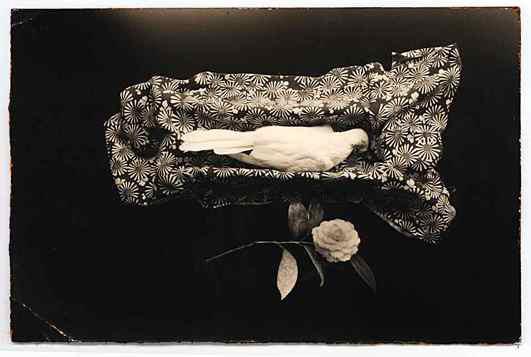 , 'A Box of Ku #49,' 1992, Atlas Gallery
