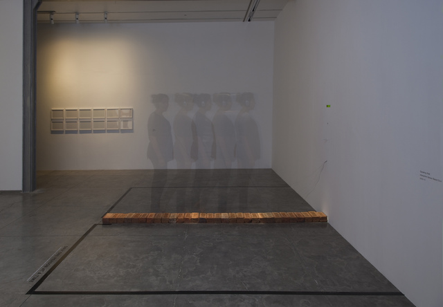 , 'Speaking Wall,' 2009-2010, The Gujral Foundation