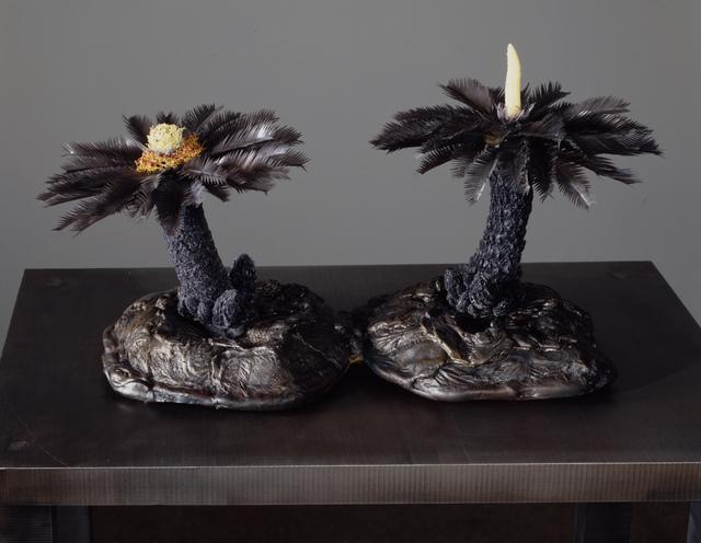 , 'Cycas orogeny maquette #2,' 2003-2004, Petzel Gallery