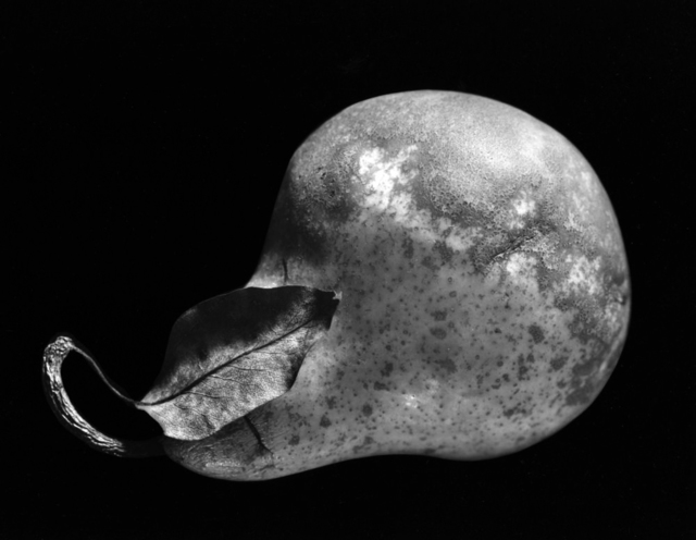 , 'Pear, New York City,' 1964, Obscura Gallery
