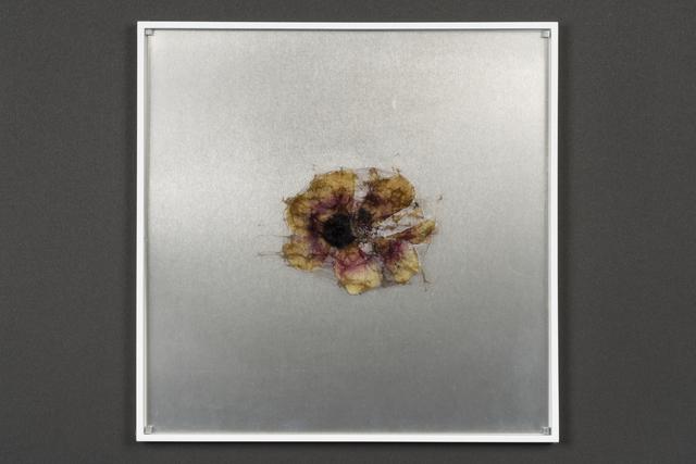 , 'elementum #1,' 2018, Takuro Someya Contemporary Art