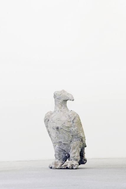 , 'Adler,' 2008-2010, Galerie Judith Andreae