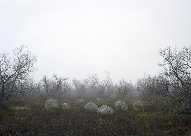 , 'Heathland,' 2019, Galleri Andersson/Sandstrom