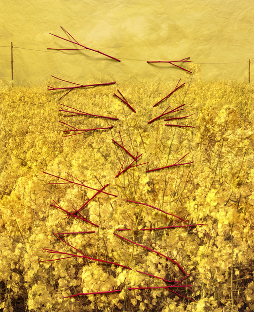 , 'Caetera Fumus,' 2015, KLOMPCHING GALLERY