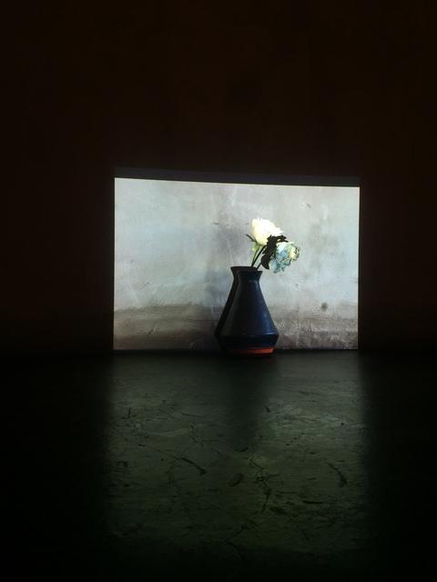 Jorge Rosano Gamboa, 'Faustine', 2019, Installation, Proyection, vase, flower and cyanotype, Kino Tonala