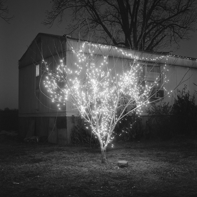 , 'Christmas Tree, Alligator, Mississippi,' 2012, Pictura Gallery