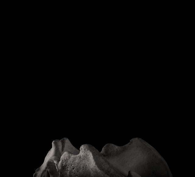 , 'Pelvis,' 2018, Novalis Contemporary Art