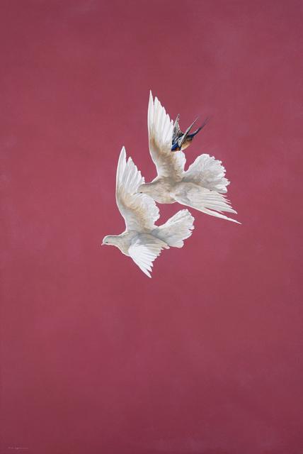 Tim Hayward, 'Flight - Tourmaline', 2018, Jonathan Cooper