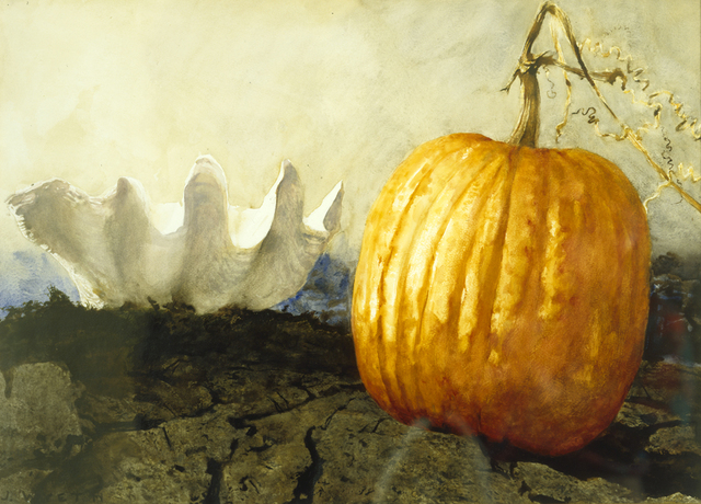 , 'Pumpkin and Shell,' 1989, Somerville Manning Gallery