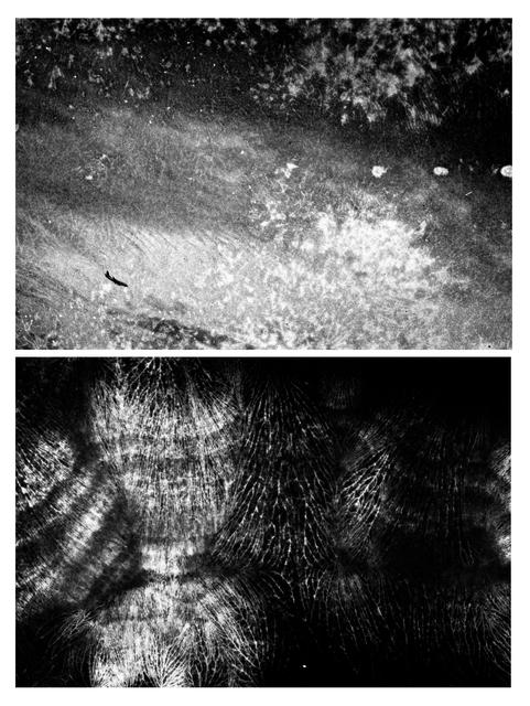Pedro Victor Brandão, 'Sem título #3 e #4 - da série Dupla Paisagem [Untitled #3 and #4 - Double Landscape series]', 2000/2010, Portas Vilaseca Galeria