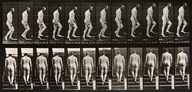 , 'Animal Locomotion: Plate 89 (Nude Man Ascending Staircase),' 1887, Beetles + Huxley