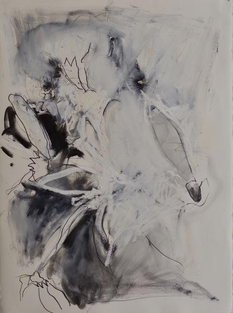 Joseph Havel, 'Last Flower', 2018, Headlands Center for the Arts: Benefit Auction 2019