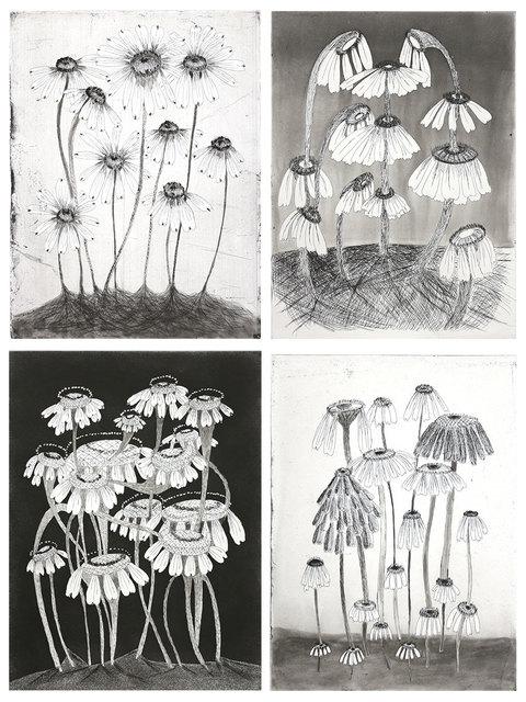 Kiki Smith, 'Variety Flowers ', 2014, Lyndsey Ingram