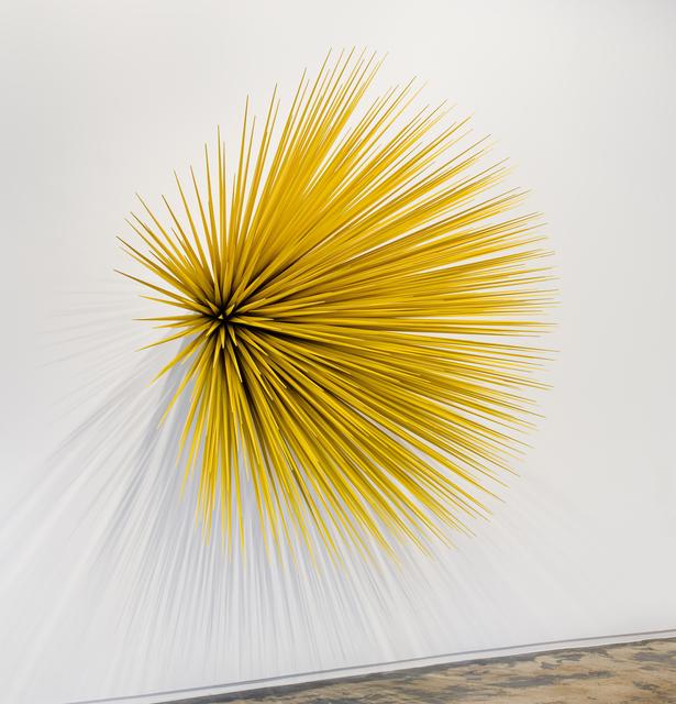 , 'Wall Flower No 1,' 2010, Waterhouse & Dodd