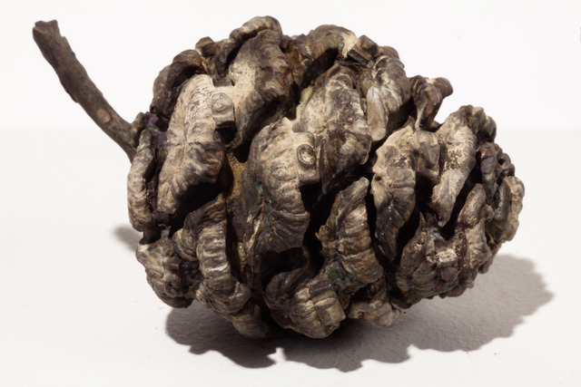 Nikolas Gambaroff, 'Untitled (Pine Cone),' 2013, SculptureCenter