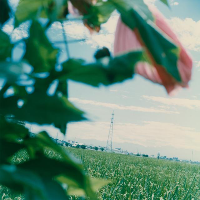 , 'Untitled,' 1998, MIYAKO YOSHINAGA