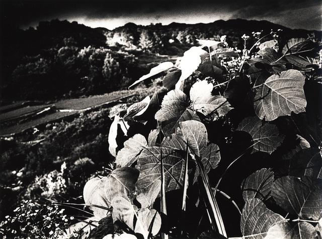, 'MT. DAIBOSATSU (No. 2001),' 1991, Galerie Bob van Orsouw