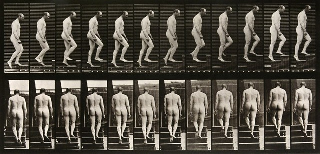 , 'Animal Locomotion: Plate 89 (Nude Man Ascending Staircase),' 1887, Huxley-Parlour