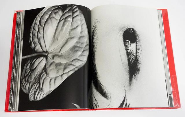 Nobuyoshi Araki, 'The Look from Erotos', 1993, Photography, Gelatin silver print on baryta paper, Galleria 13